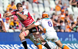 Paul-Willemse-Lions2-630